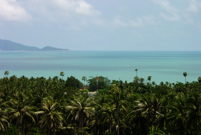 Bophut Million Dollar View Affordable Seaview Plots