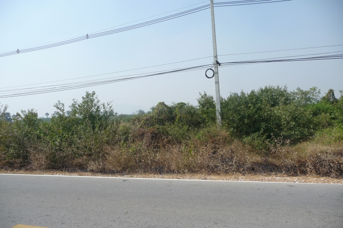 Land For Sale 25 Rai 209 Sqw. Cha-Am North