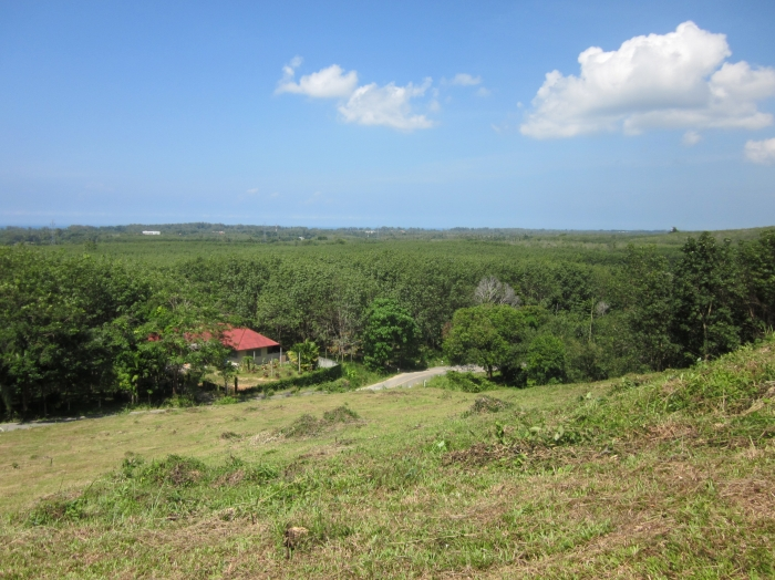 Panoramic Sea-View Land For Sale