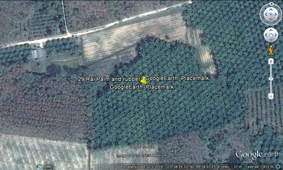 Farm Land 29 Rai with rubber and palm oil