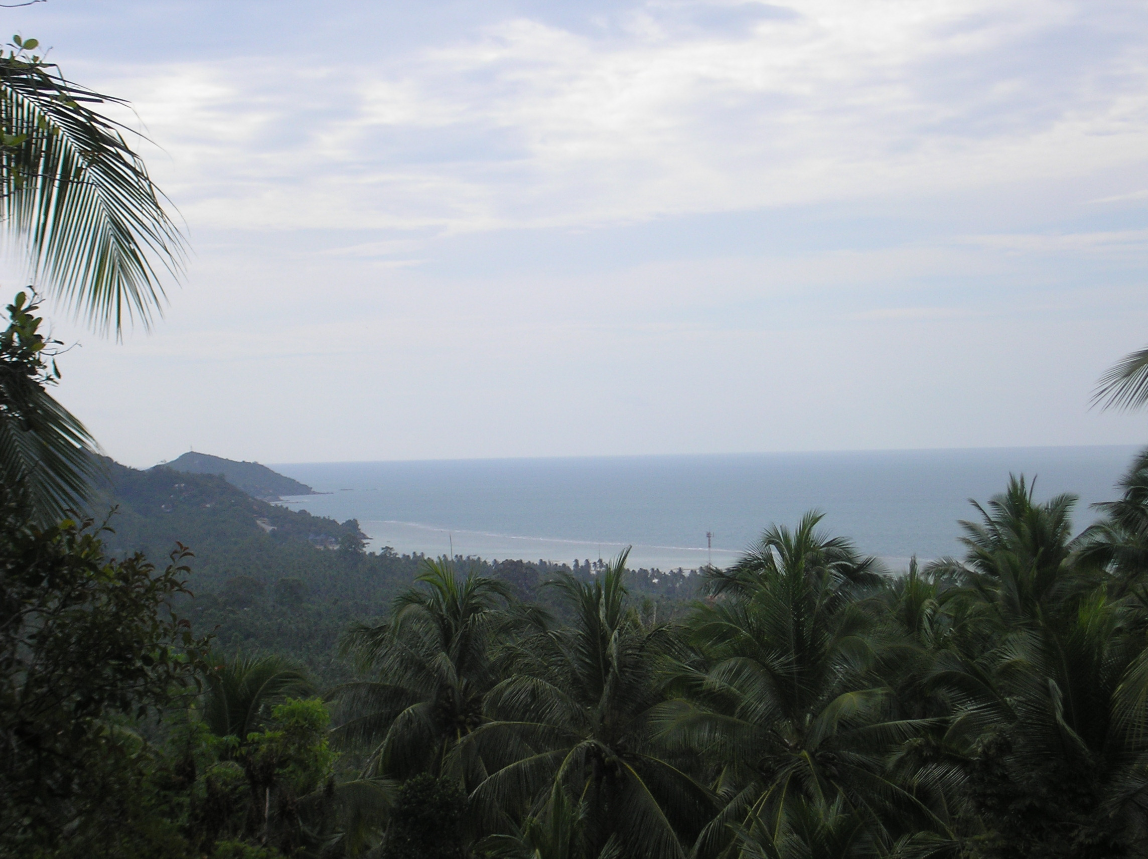 Land for sale in Koh Phangan Baan Tai