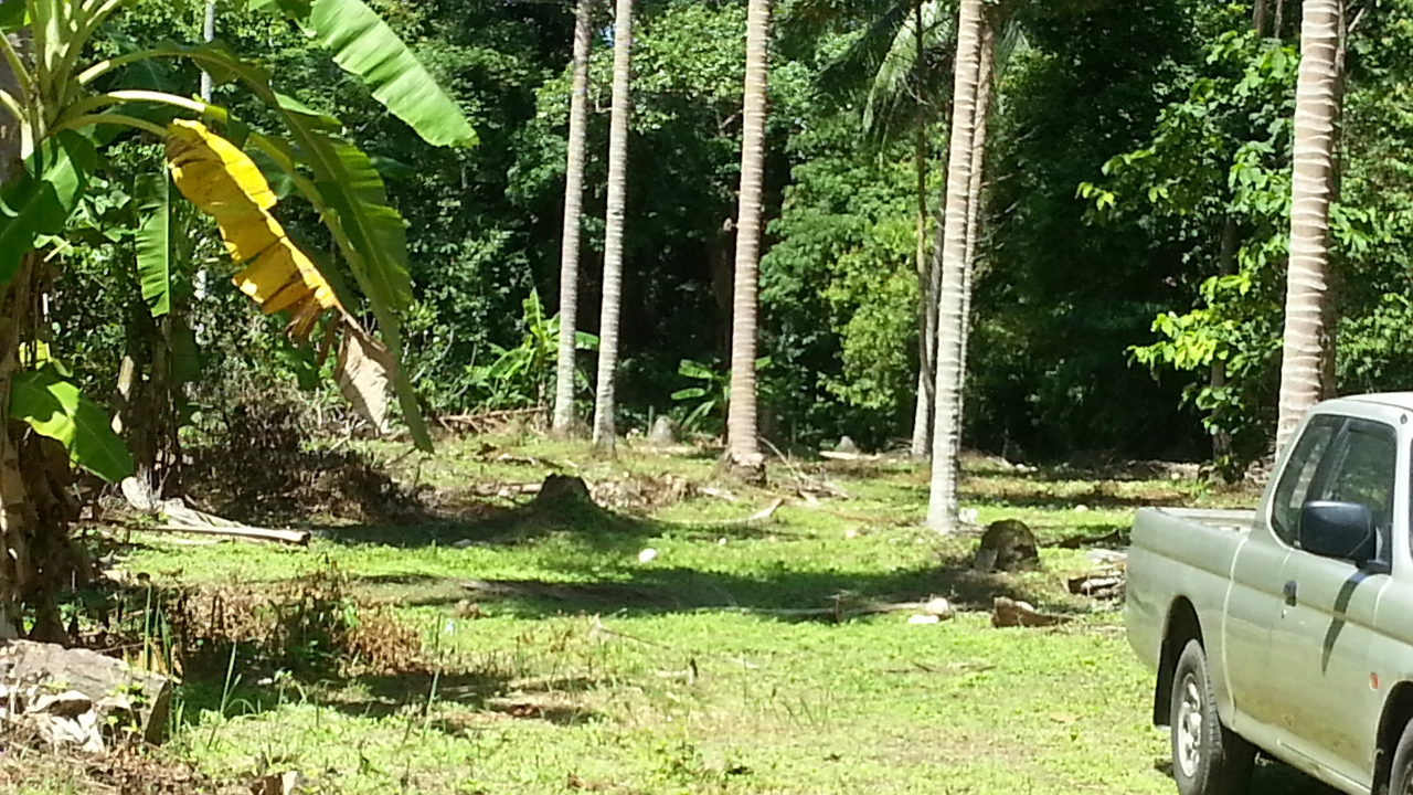 Koh Samui, flat land 7 rai for sale