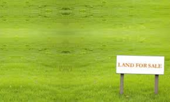 A great plot of land for sale