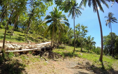 For sale different sea view lands in Chaweng Noi Koh Samui