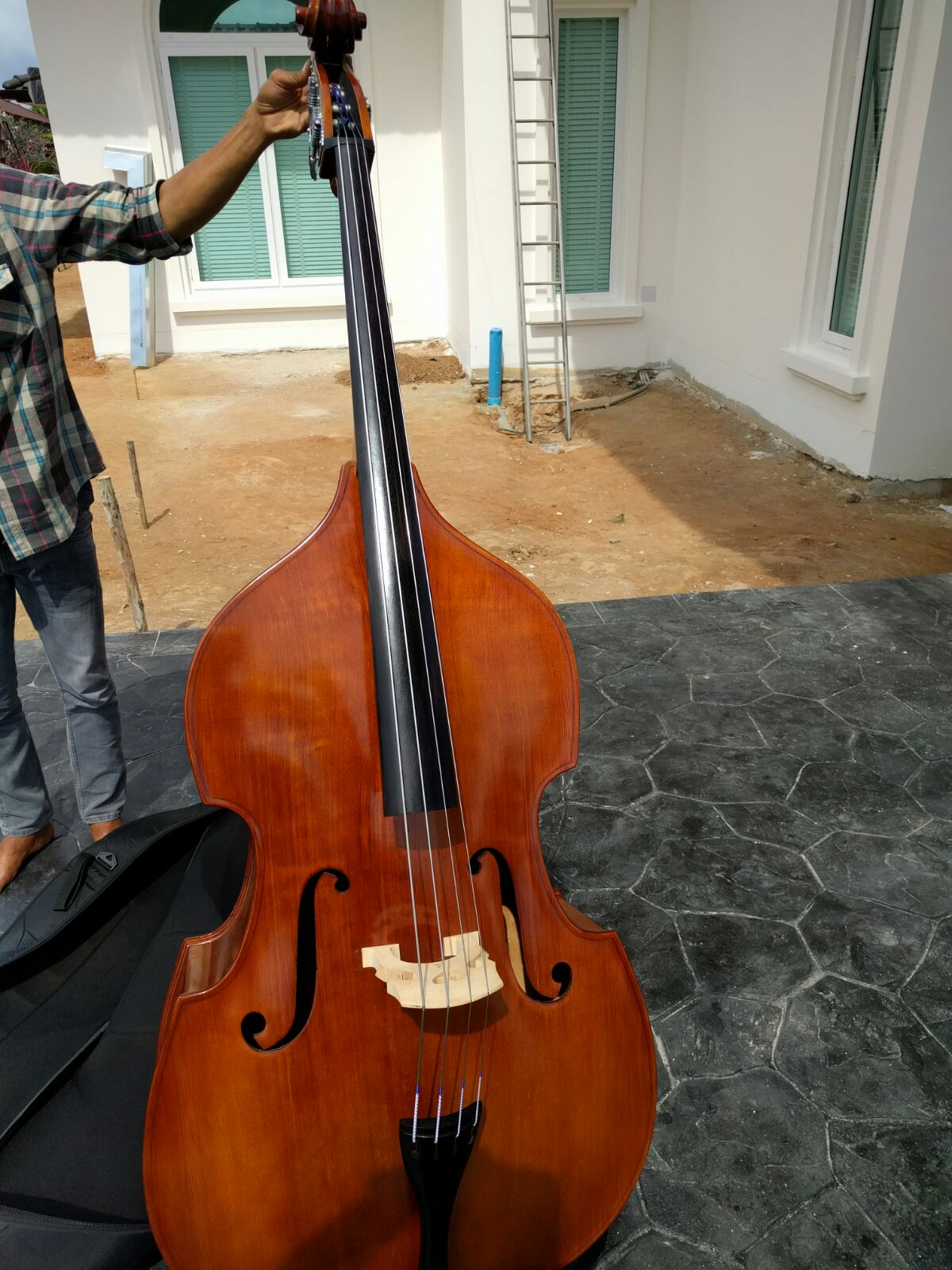 Double Bass Music Instrument included bag