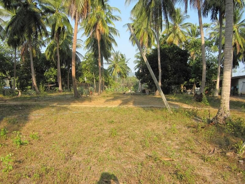 Nice Plot For Sale In Kho Phangan