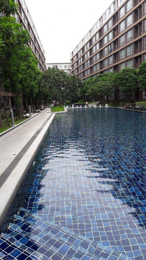 Cosy Dcondo Creek Kathu Phuket Thailand