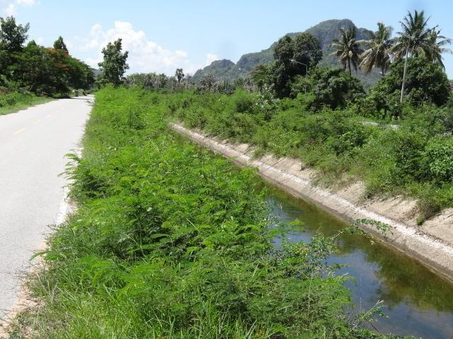 Cha-am 2-1-45 Rai Corner Plot Near Canal