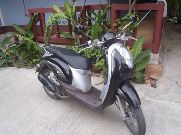 Honda Scoopy 8100kms Price Negociable