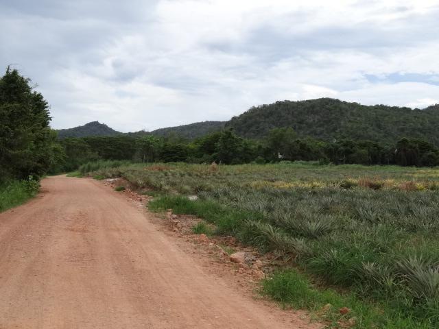 Beautiful Connecting Land Plots 3-10 Rai