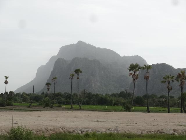 5 Stunning Mt. View Chanote Land Plots