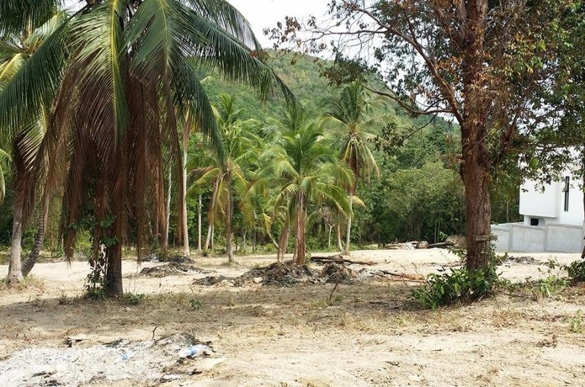 2 Plots  for Sale in Bank Rak / Koh Samui Each Plot with around 700 sqm