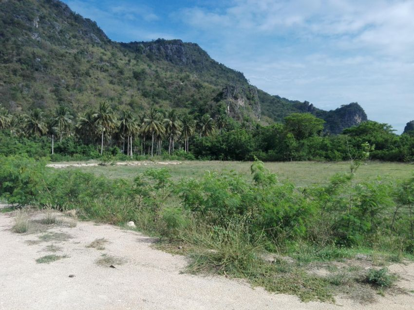 Awesome Land For Residential Development
