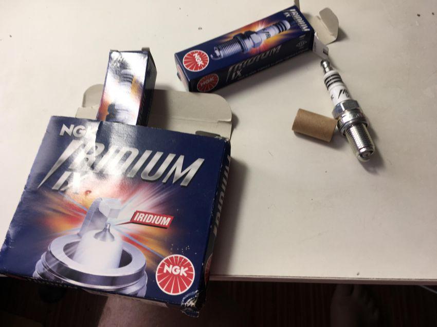 NGK Iridium IX spark plugs for Harley Davidson & BMW, amongs