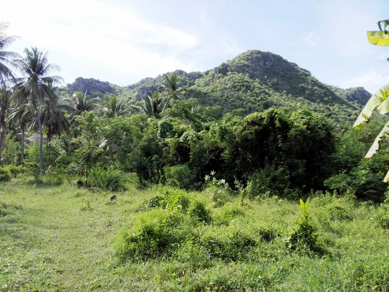 Reduced Cha-am Mountain Front 6-3-56 Rai