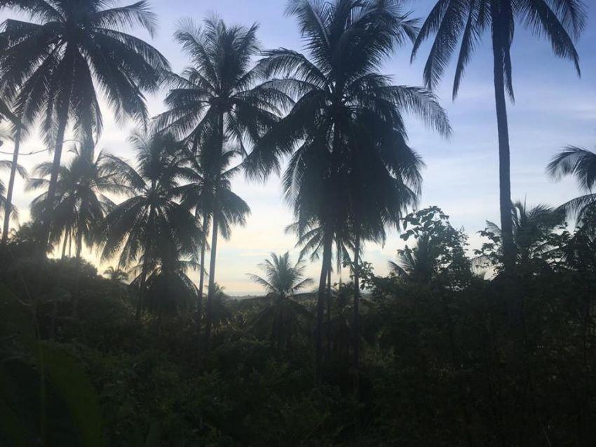Sea view land for sale 1 500 000 per rai