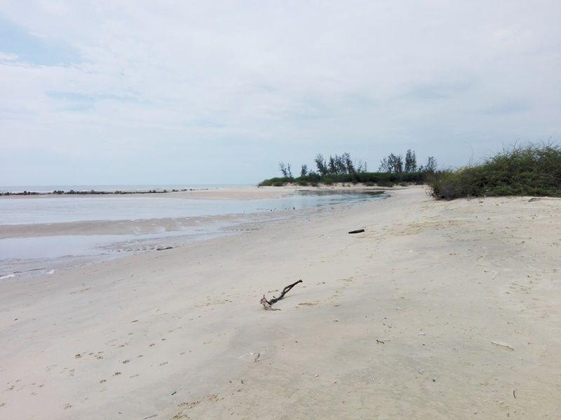 Absolute Beachfront 3-0-96 Rai