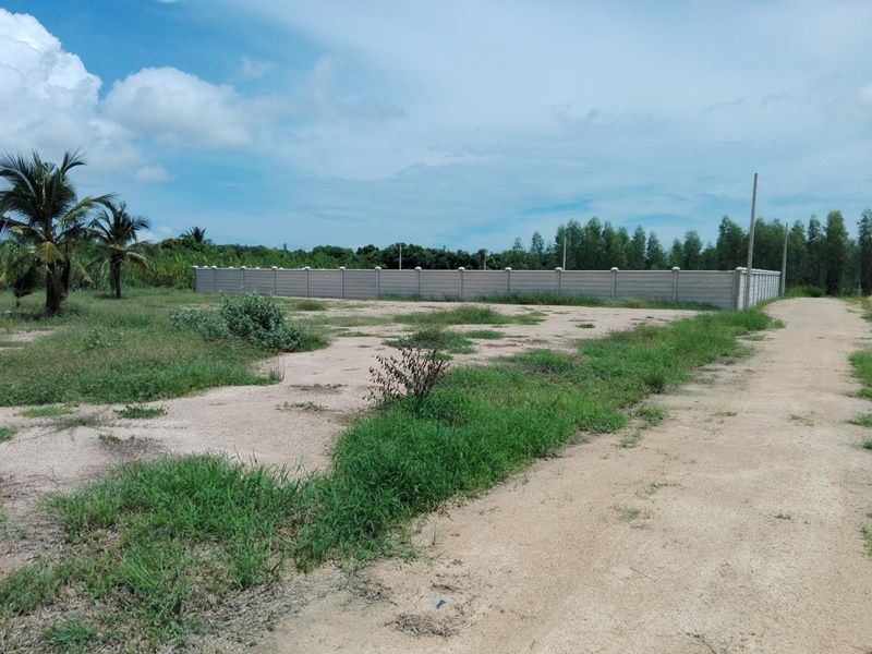 3 Home Building Plots Each 3,500 THB/TW