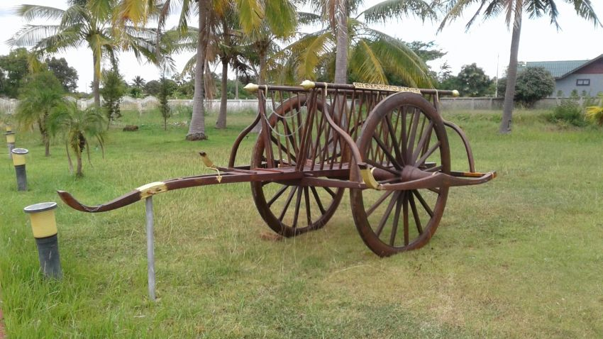 original teak wood buffalo cart for sale