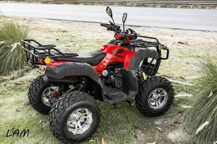 Promotion ATV Utility 150cc Brand New