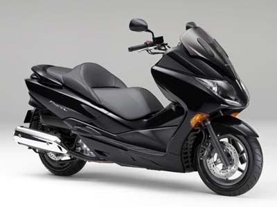 Honda Forza Wanted