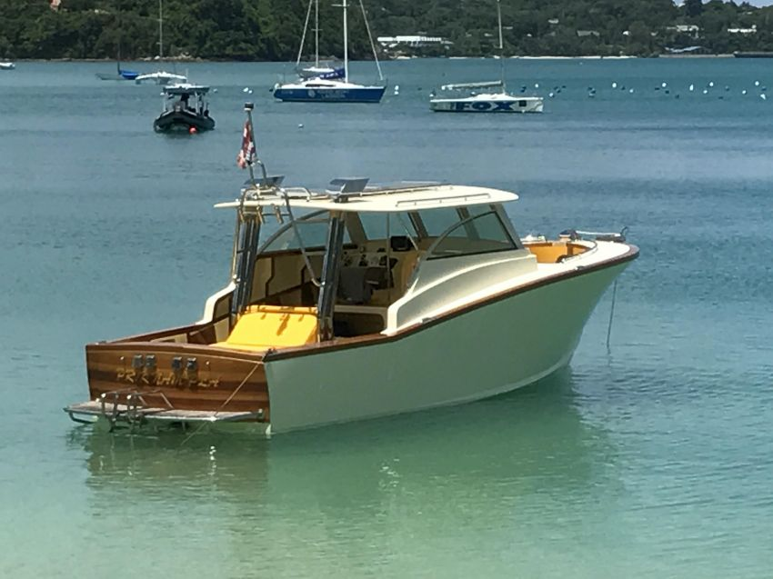 Custom 9m Picnic Boat with 440hp Yanmar