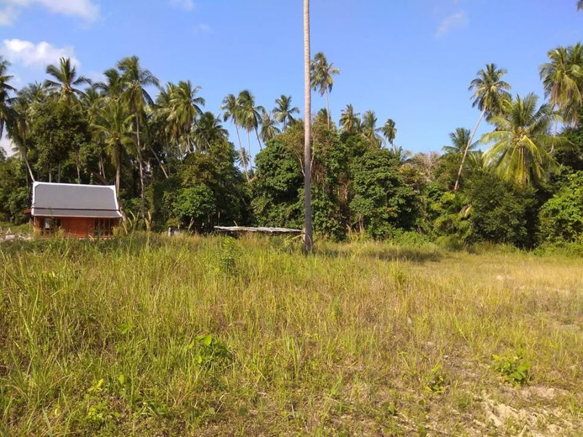NICE LAND NEAR THE BEACH 0.5 Rai