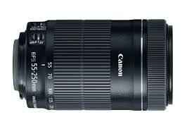 Canon EF-S 55-250mm f/4-5.6 IS STM Lens.