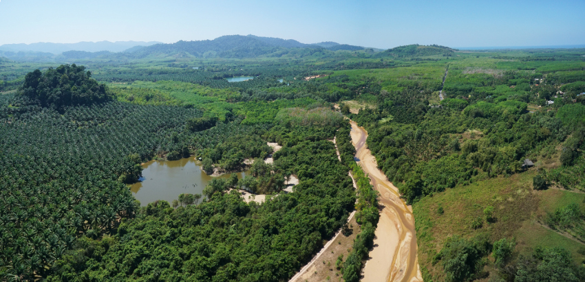 21 Rai Land with Chanote for sale - Takuapa old town, Phang Nga