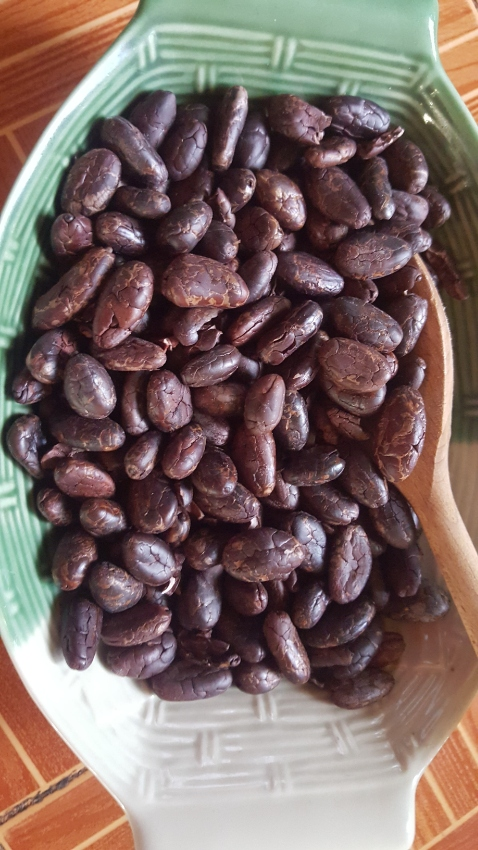 100 % organic cocoa beans - make your own chocolate so easy!!!