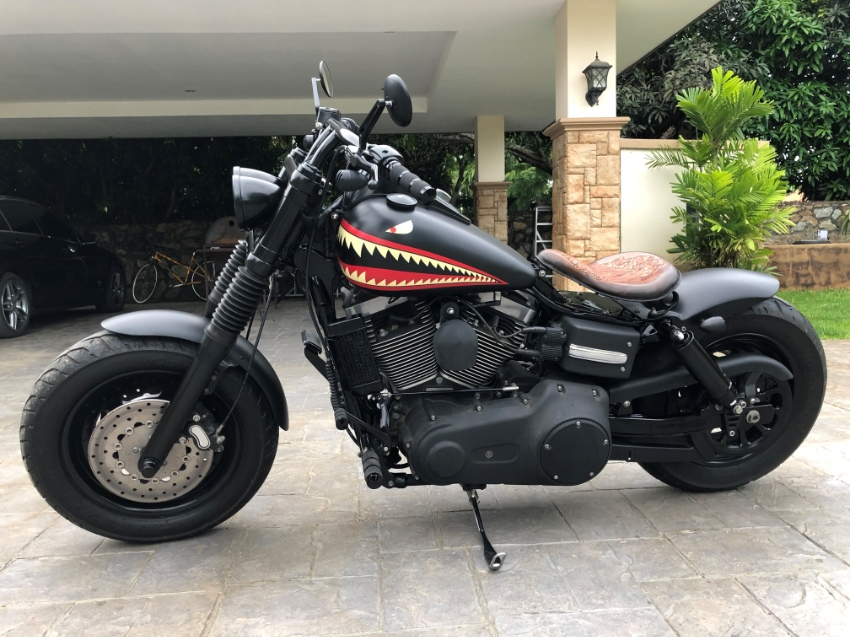 Harley Davidson Fat Bob Custom Bike