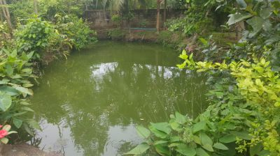 Huay Yai Large Character House in large mature garden.  Big Pond