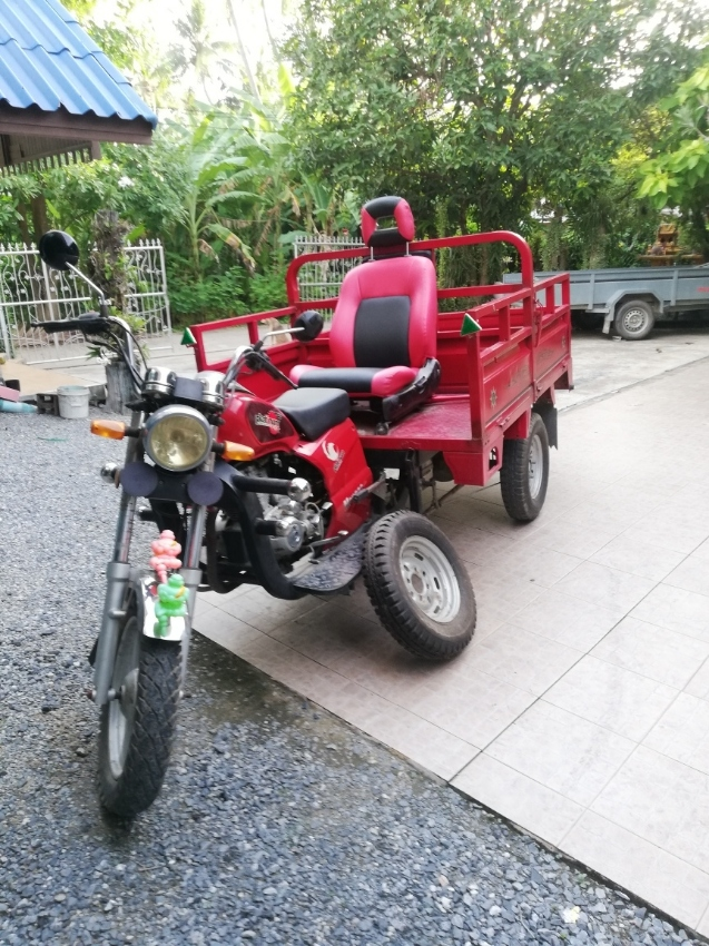 2014 PLATINUM Monaco 150 cc  - 3 wheel cargo trike / motorcycle