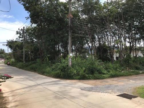 1 Rai Land for Sale/Lease - Rawai - Phuket - (4km to Nai Harn Beach)