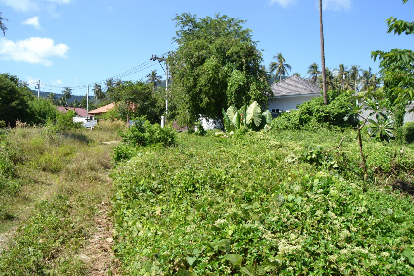 For sale 3 plots of 800m² in Koh Samui near the beach