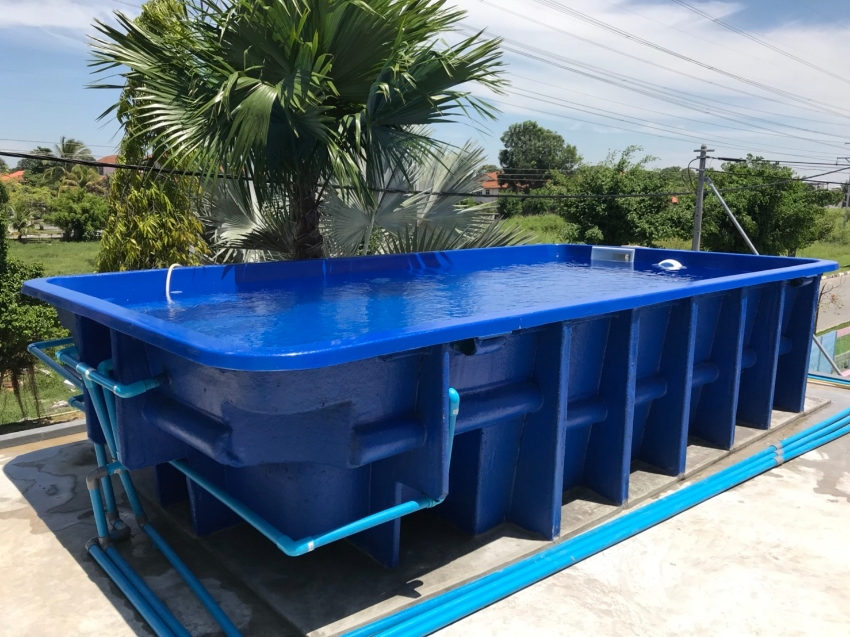 Above Ground Emperor 6m Swimming Pool!