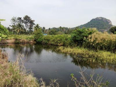 Beautiful Mountain View 7-2-86 Rai with 20 x 40 Pond
