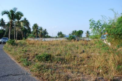 Beautiful Plot in BangSaray 300tw (!price reduced ) Absolute Bargain.
