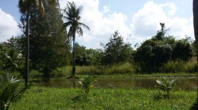 Hua Hin Land close to Majestic Creek Golf