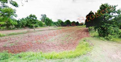 2904001 116 Rai Land in Khong District Korat for Freehold Sale