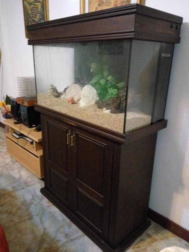 Aquarium - 1 mtr wide, complete with all accessories