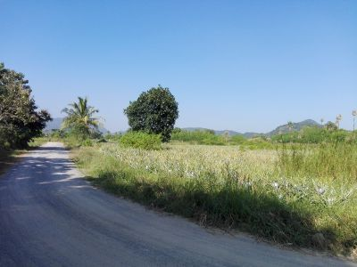 2 Rai Corner Plot Perfect For Small Home Development 130 M Road Front