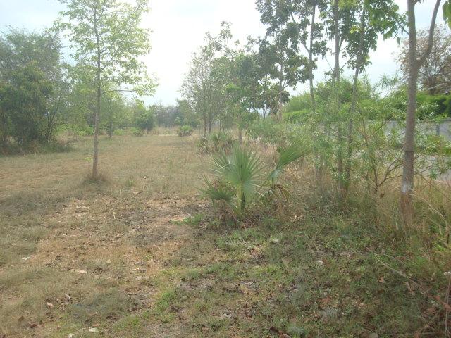 Chonburi-Pattaya Land for sale