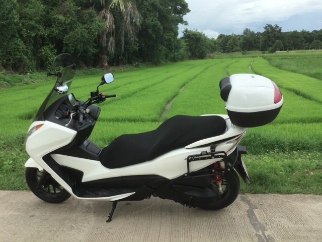 Honda Forza 2013
