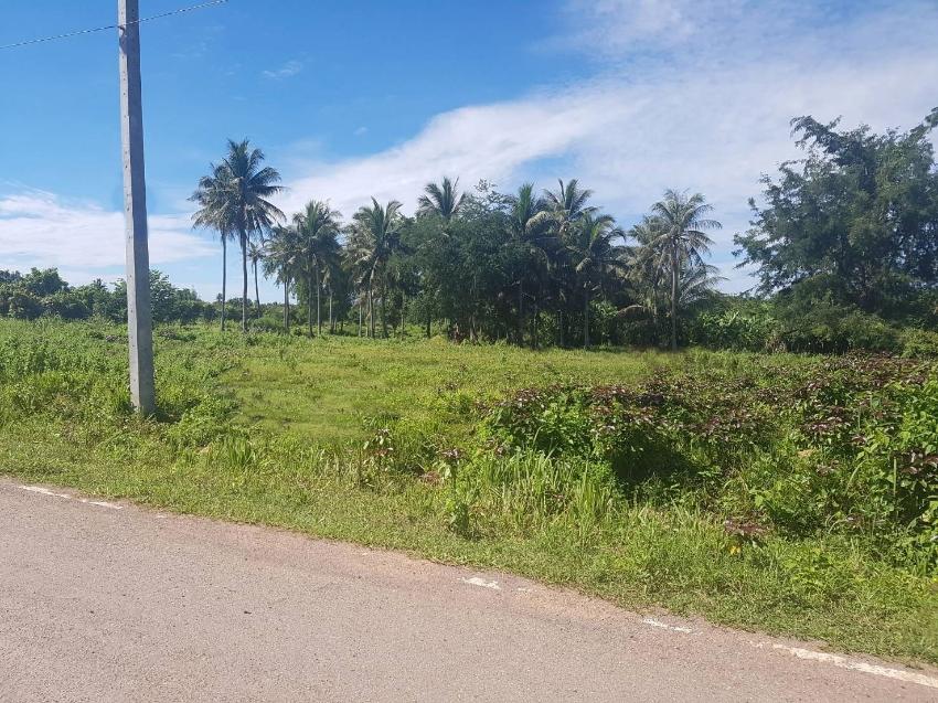 Land 3 rai 361 T.w. for sale in Pranburi 450 m from Phetkasem