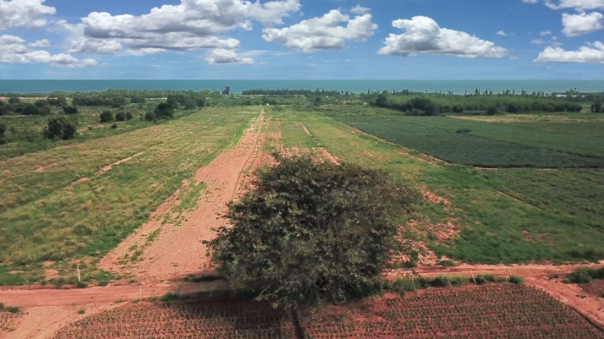 Land 30 rai panorama view 500 m from beach for sale in Tung Mamao