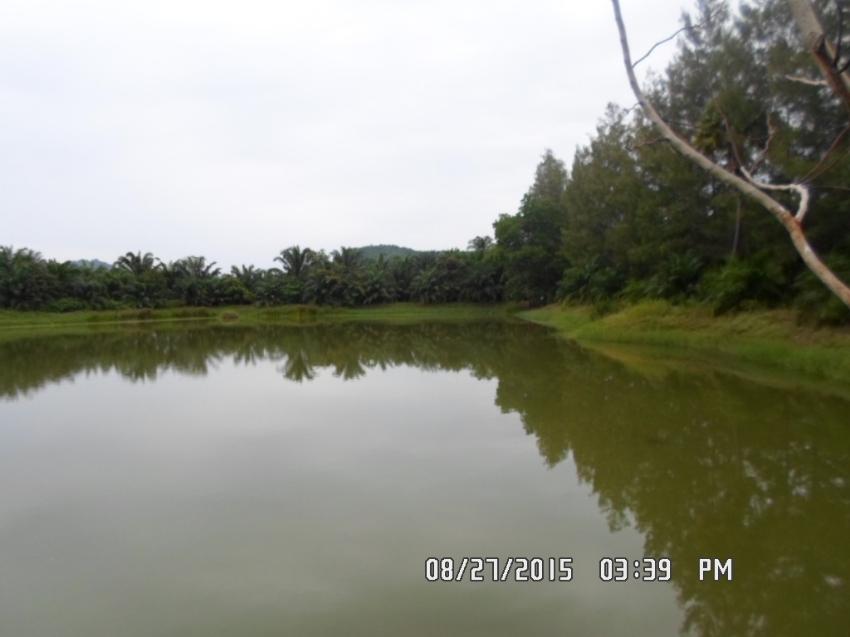 Lake Resort for sale