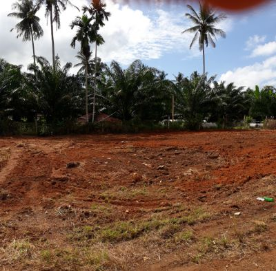 Land for sale ; 1 Chanote 2 hong; 3 Chanote x 6 Ong available; Krabi