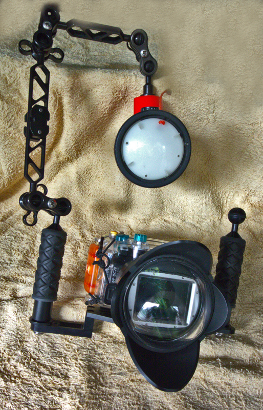 Are you interested in Underwater Photography?