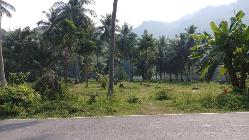 7 Rai Beautiful Land for sale near mountian